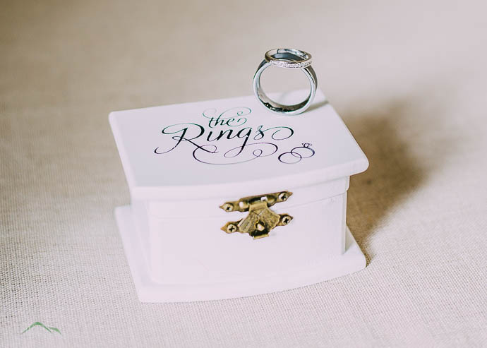 Wedding rings on a ring box
