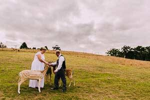 Donna and Justin's beautiful celebration at Gum Gully Farm
