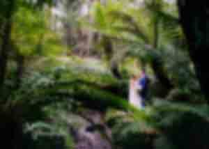 Rachel and Blake's Lyrebird Falls Wedding