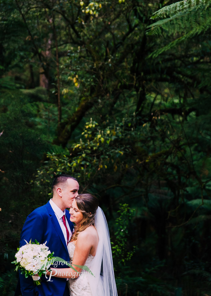 Lyrebird Falls wedding