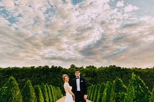 Alowyn Gardens Wedding - Kim and Harry