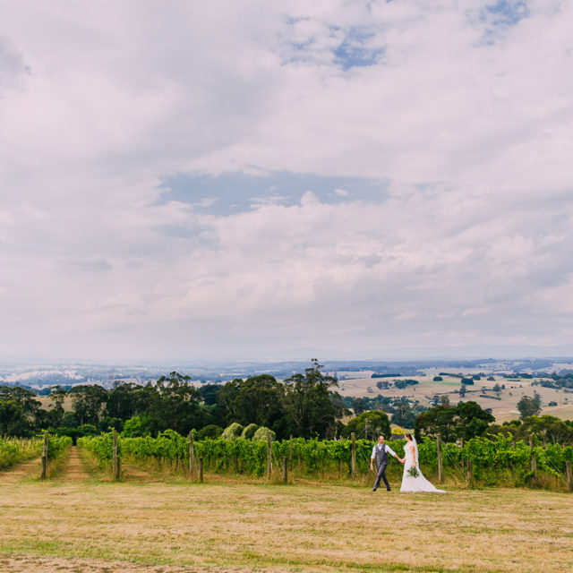 Bride and groom walking past vines at Gippland winery