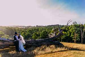 Surprise wedding at Gum Gully Farm wedding