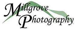 Millgrove Photography - Melbourne Wedding Photographer