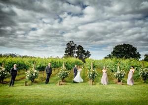 Bridal party at a vineyard wedding
