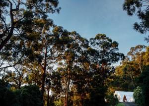 Yarra-Valley-Backyard-Wedding-46